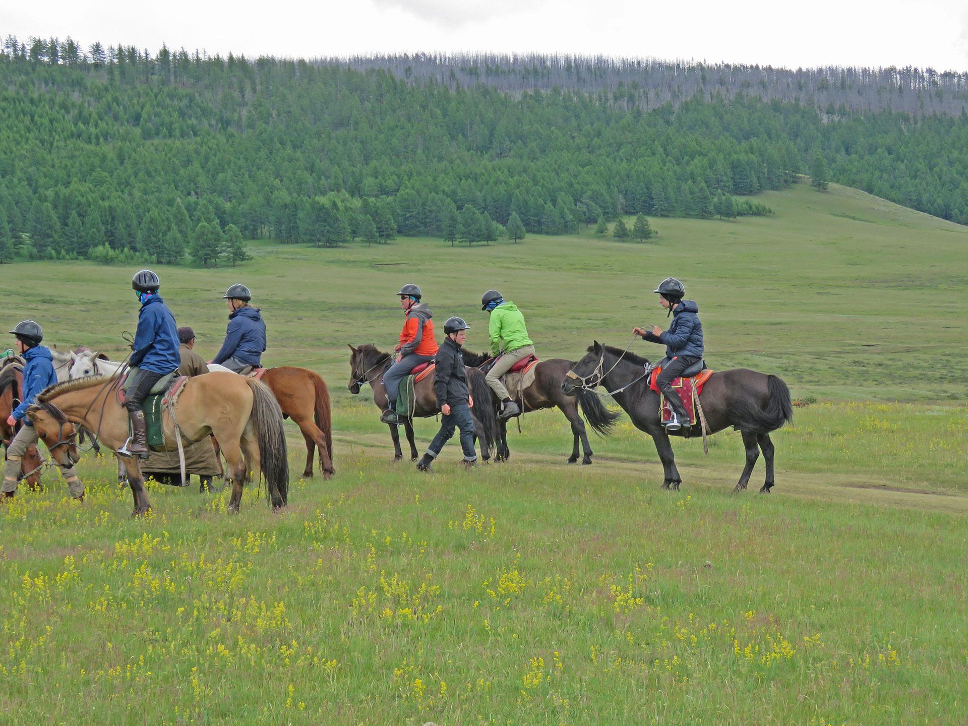 horses5deanback